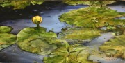 Cow Lily at Lake Hackberry, near Gibson LA 10 x 20 inches, oil on canvas